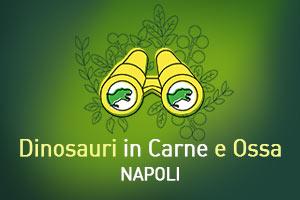 DCO Napoli
